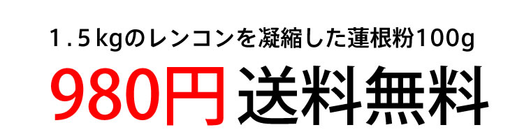 レンコン1.5kg分980円送料無料