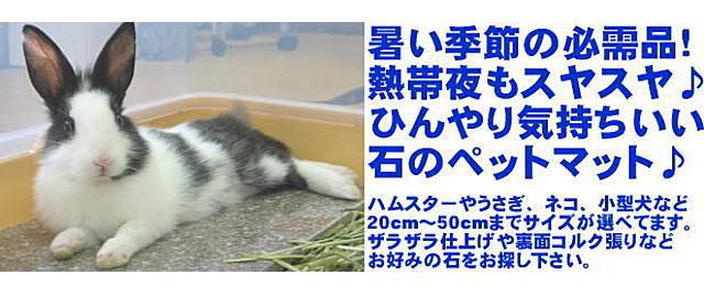 大理石ペットマットイメージ