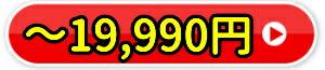 ●19,900円