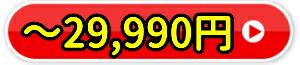 ●29,900円