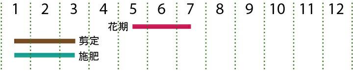 開花カレンダー(エゴ)