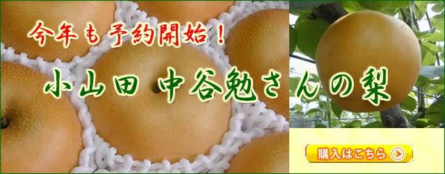 中谷農園の梨