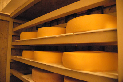 大友チーズ工房 チーズ貯蔵庫