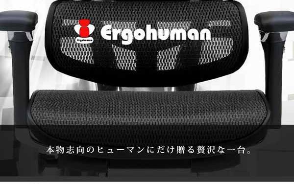エルゴヒューマン/Ergohuman ロータイプ ベーシック&ハイブリッド EH-LAM [ヘッドレストなし]