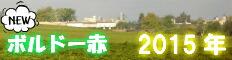 ボルドー赤2015年産