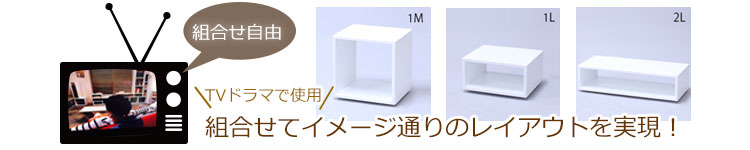 TVに登場IKO-BOX