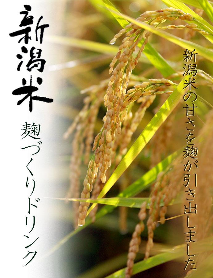 niigatamai_690.jpg
