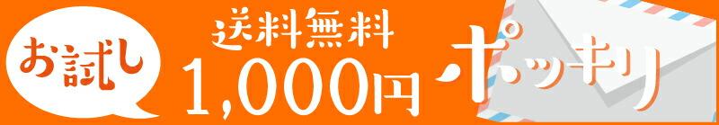 送料無料1,000円ポッキリ