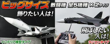 ビッグサイズ戦闘機