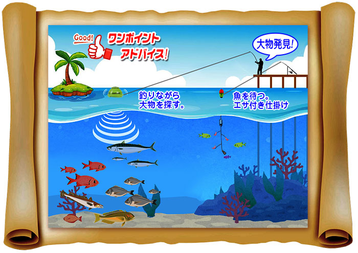 魚群探知で大物ねらい【Wi-Fi対応 魚群探知機】