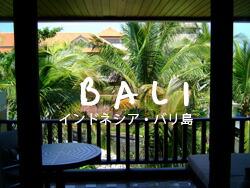 バリ島のお土産