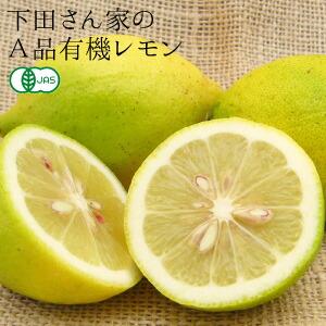 広島産 無化学農薬A品レモン3kg