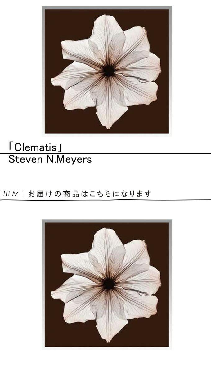『アートフレーム Steven N.Meyers 1