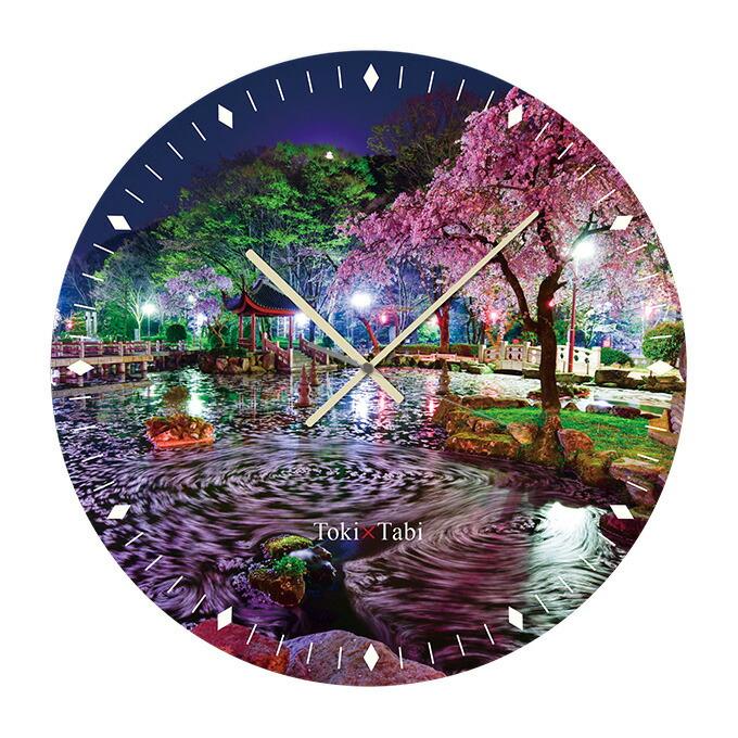 日中友好庭園の夜桜