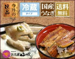 【送料無料】うなぎ串蒲焼きと串白焼き3串詰合せ
