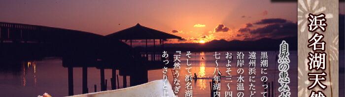 浜名湖天然うなぎ 蒲焼き