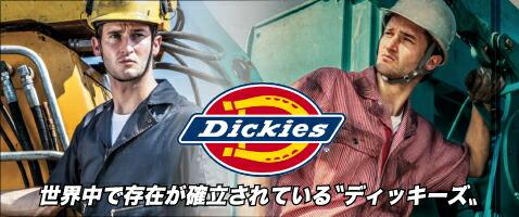 dickise ディッキーズ