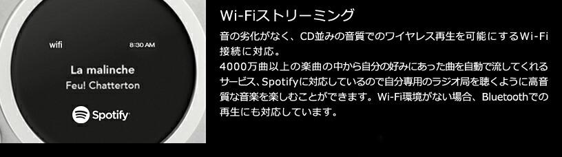 Tivoli Audio(チボリ・オーディオ)「Model One Digital 」