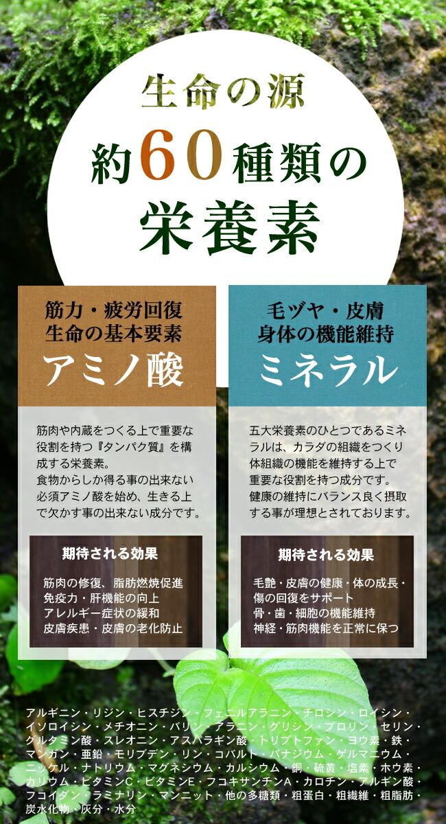 アミラル 60種の栄養説明