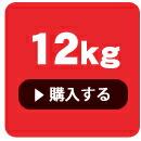 子犬12kg