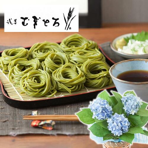 鉢植えセット「浅草むぎとろ 茶そば」