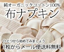 布ナプキン【メール便送料無料】