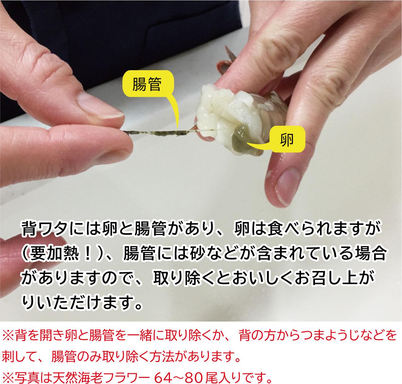 フラワー64〜80えびの卵と腸管(説明文あり)
