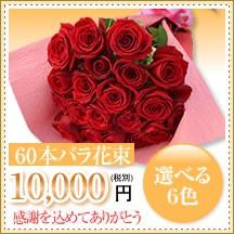 バラ60本