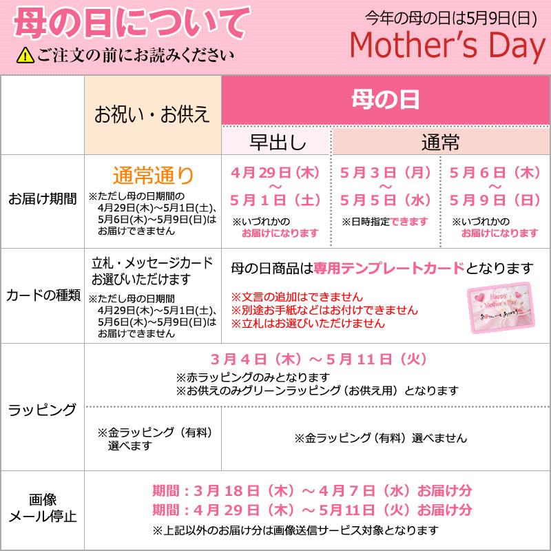 母の日について
