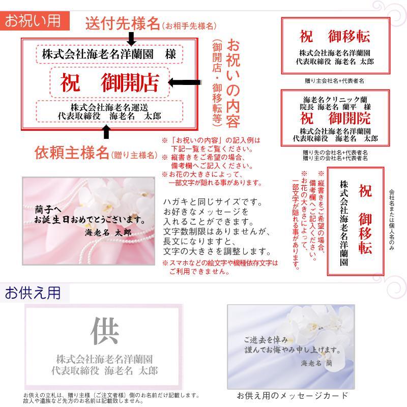紙札&メッセージカード