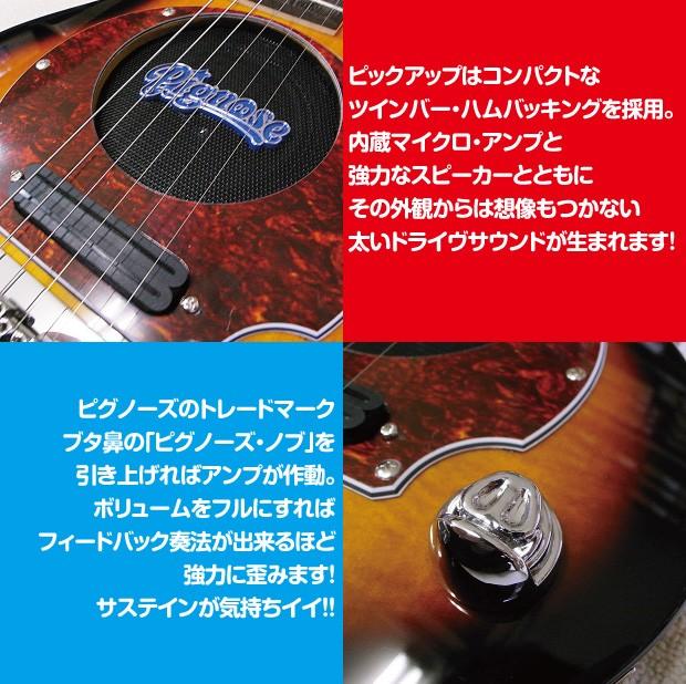pgg200bs_02.jpg