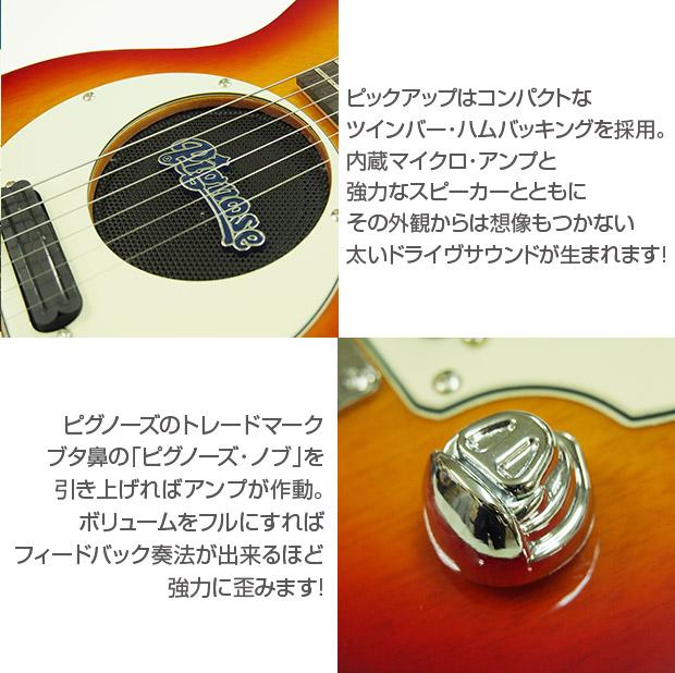 pgg200cs_02.jpg