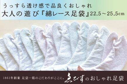 綿/レース