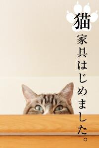 猫用2段ベッド ネコベッド ネコ家具 フレームのみ パイン材 カントリー調 無垢 天然木 猫用品
