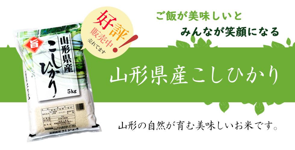 米 お米 10kg コシヒカリ 山形産 令和2年産