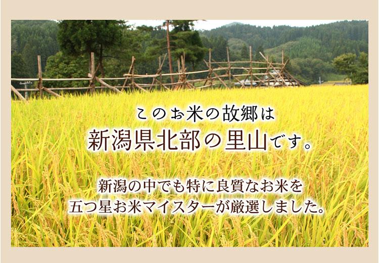 お米の説明2