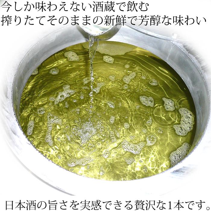 日本酒 酒蔵で飲むしぼりたて純米大吟醸