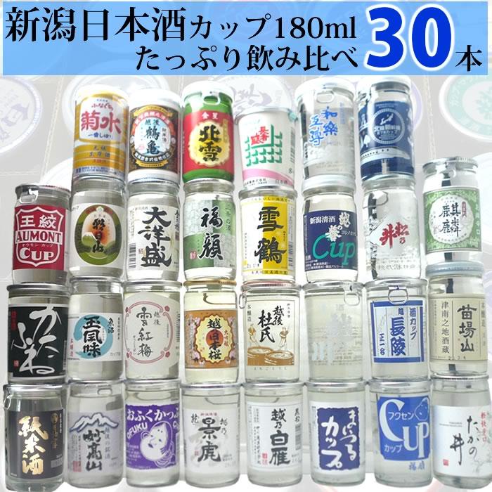 新潟日本酒カップセット30本