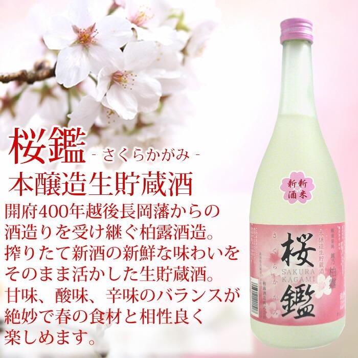 桜鑑 本醸造生貯