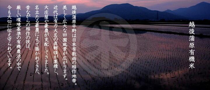 越後米蔵商店 有機栽培米 新潟産コシヒカリ