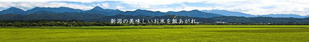 新潟の美味しいお米を飯あがれ