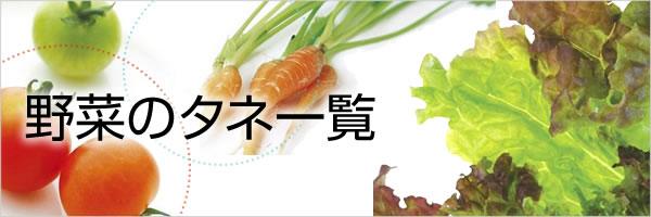 野菜のタネ(種)