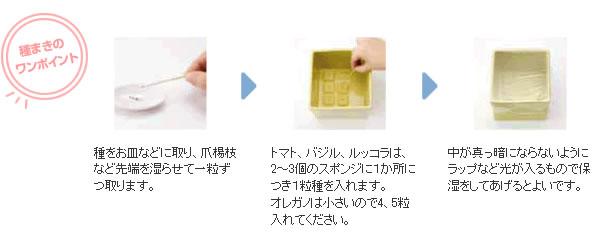 心知菜園(cocochi saien)ワンポイント