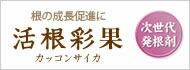 活根彩花(カッコンサイカ)