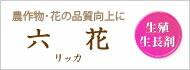 六花(リッカ)
