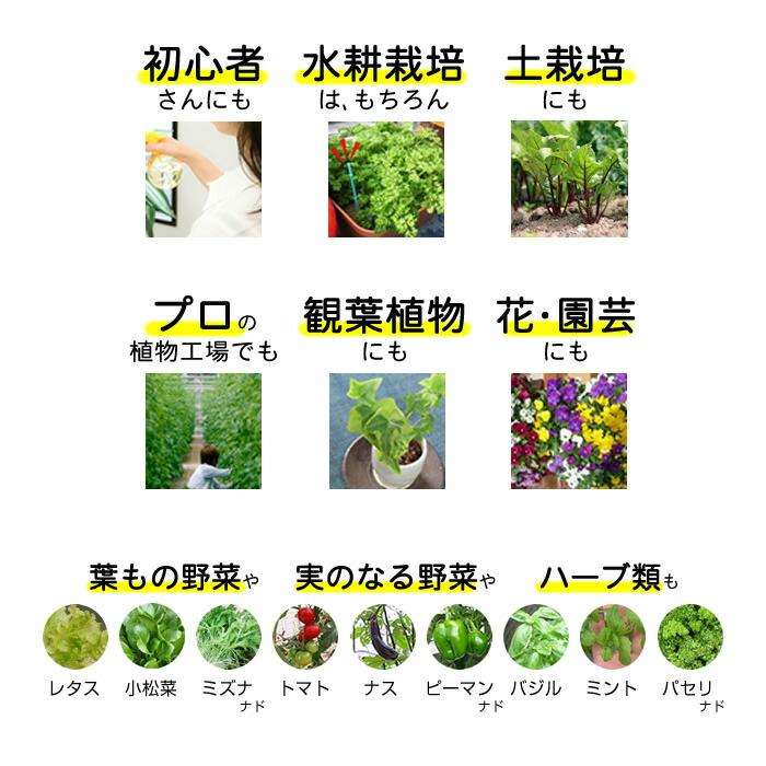 水耕栽培 液体肥料 おうちのやさい