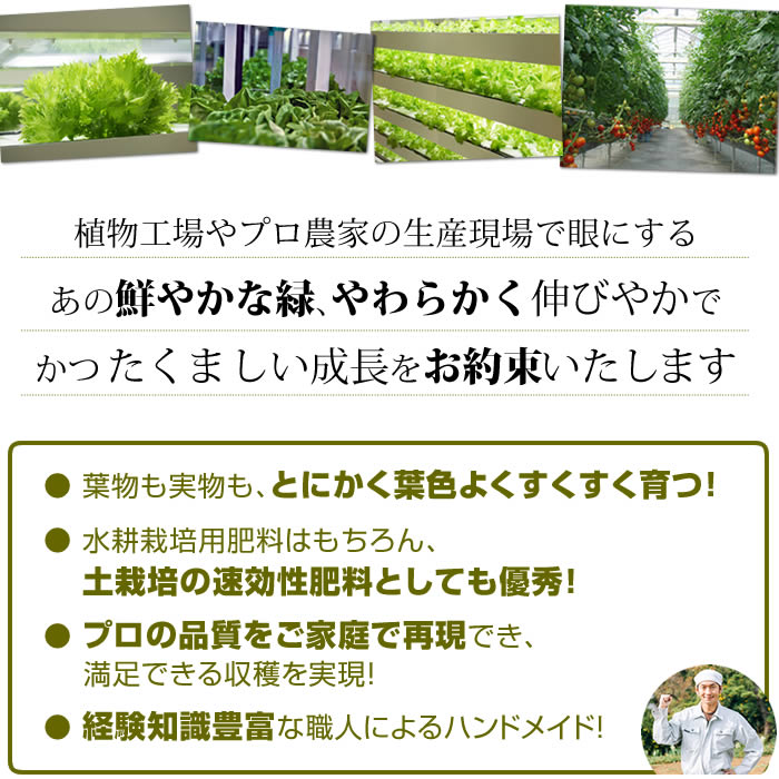 水耕栽培用エコゲリラ液肥