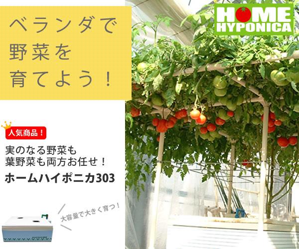 水耕栽培キットホームハイポニカ303-ベランダで野菜を育てよう