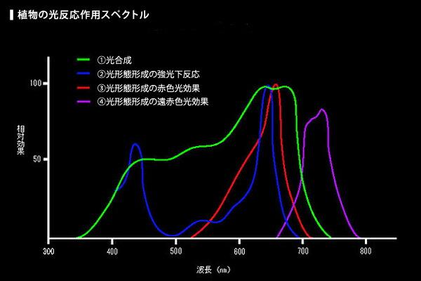 植物の光反応作用スペクトル