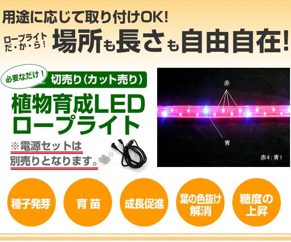 植物育成LEDロープライト切売り(電源セット別売り)[赤・青]